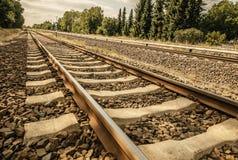 Spoorweg bij dichte waaier op een zonnige dag in goed weer royalty-vrije stock foto