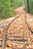 Spoorweg in de herfst Stock Fotografie