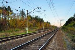 Spoorweg in de herfstbos Stock Afbeeldingen