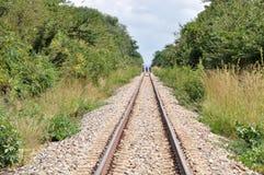 Spoorweg in de wildernis Stock Foto's