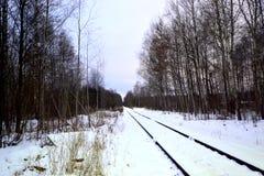Spoorweg in de winterbos Stock Afbeelding
