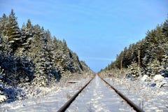 Spoorweg die in de afstand gaat Stock Foto