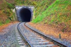 Spoorweg die naar kleine tunnel leiden Stock Foto