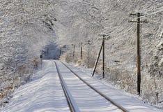 Spoorweg door bevroren bos stock fotografie