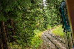 Spoorweg door bos royalty-vrije stock fotografie