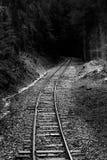 Spoorweg door bos royalty-vrije stock foto's