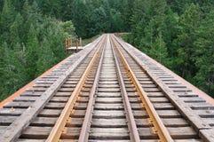 Spoorweg door bos Royalty-vrije Stock Afbeeldingen