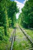 Spoorweg door bos royalty-vrije stock foto