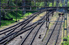 Spoorweg/Eisenbahnstrecke stock foto's