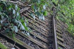 Spoorweg en aard Royalty-vrije Stock Afbeeldingen