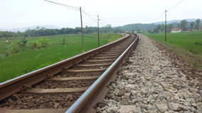 Spoorweg en Paddy Field Stock Afbeelding