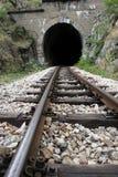 Spoorweg en tunnel royalty-vrije stock foto