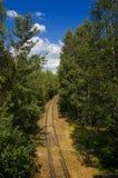 Spoorweg in het bos Royalty-vrije Stock Foto's