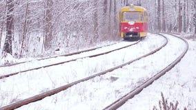 Spoorweg in het bos stock videobeelden