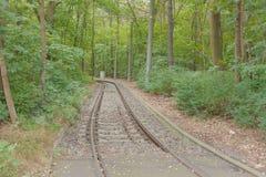 Spoorweg in het bos Royalty-vrije Stock Afbeelding