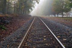 Spoorweg in het bos bij de nevelige ochtend Royalty-vrije Stock Foto