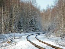 Spoorweg in het bos in de winter Stock Fotografie
