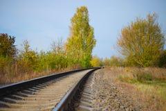 Spoorweg in het bos in de zomer op een zonnige dag stock afbeelding
