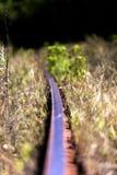 Spoorweg in het bos royalty-vrije stock foto