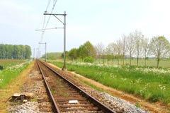 Spoorweg in het platteland van Nederland Royalty-vrije Stock Foto's