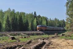 Spoorweg met trein in bos Royalty-vrije Stock Afbeelding
