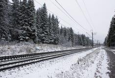 Spoorweg onder de winterbos Royalty-vrije Stock Fotografie