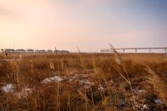 Spoorweg op het gebied bij zonsondergang Royalty-vrije Stock Foto's