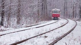 Spoorweg in sneeuwbos stock video