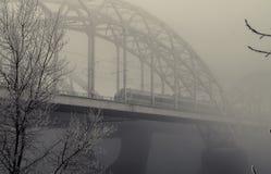 Spoorwegbrug in de mist Stock Foto