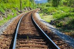 Spoorwegen in het hout Stock Foto's