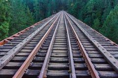 Spoorwegensporen die in de wildernis samenvoegen Stock Foto