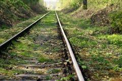Spoorwegspoor in de nevel Royalty-vrije Stock Afbeelding