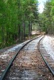 Spoorwegspoor door bomen Stock Fotografie