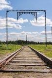 Spoorwegsporen die in de afstand naar het bos in su gaan Royalty-vrije Stock Afbeelding