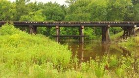 Spoorwegsporen in het land Royalty-vrije Stock Foto's