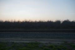 Spoorwegsporen, olijfbomen en zonsondergang Royalty-vrije Stock Foto