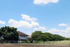 Sporchi le Camere di area ed il fondo anteriori al suolo dell'albero dell'immagine, villaggio della proprietà del paesaggio su ci Fotografia Stock Libera da Diritti