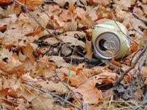 Sporchi, rifiuti nella foresta nella caduta tarda sulle tracce di escursione attraverso gli alberi sulla forcella gialla e Rose C Fotografie Stock Libere da Diritti