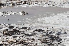 Sporcizia del mar Morto in natura Fotografia Stock Libera da Diritti