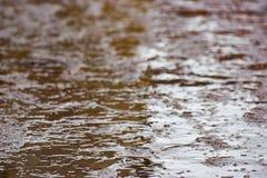 Sporcizia e pozze sull'asfalto fotografia stock