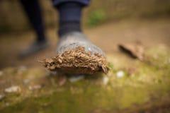 Sporcizia su una galoscia a piedi fotografie stock