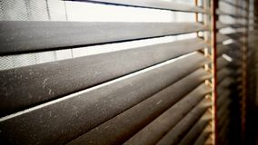 Sporco nei punti della polvere orizzontali sul primo piano di legno dei ciechi della finestra non buon per sano, se puliscalo fotografia stock