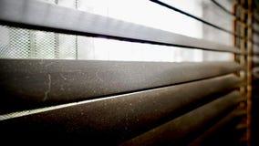 Sporco nei punti della polvere orizzontali sul primo piano di legno dei ciechi della finestra non buon per sano, se puliscalo fotografie stock libere da diritti