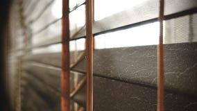 Sporco nei punti della polvere orizzontali sul primo piano di legno dei ciechi della finestra non buon per sano, se puliscalo immagine stock