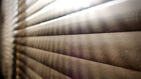 Sporco nei punti della polvere orizzontali sul primo piano di legno dei ciechi della finestra non buon per sano, se puliscalo fotografia stock libera da diritti