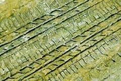Sporen in de moddertextuur Royalty-vrije Stock Fotografie