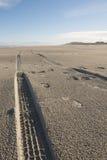 Sporen in het strand Stock Fotografie