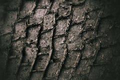 Sporen in modder Royalty-vrije Stock Afbeeldingen