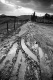 Sporen in modderige weg Stock Foto