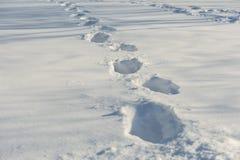 Sporen op de sneeuw Stock Fotografie
